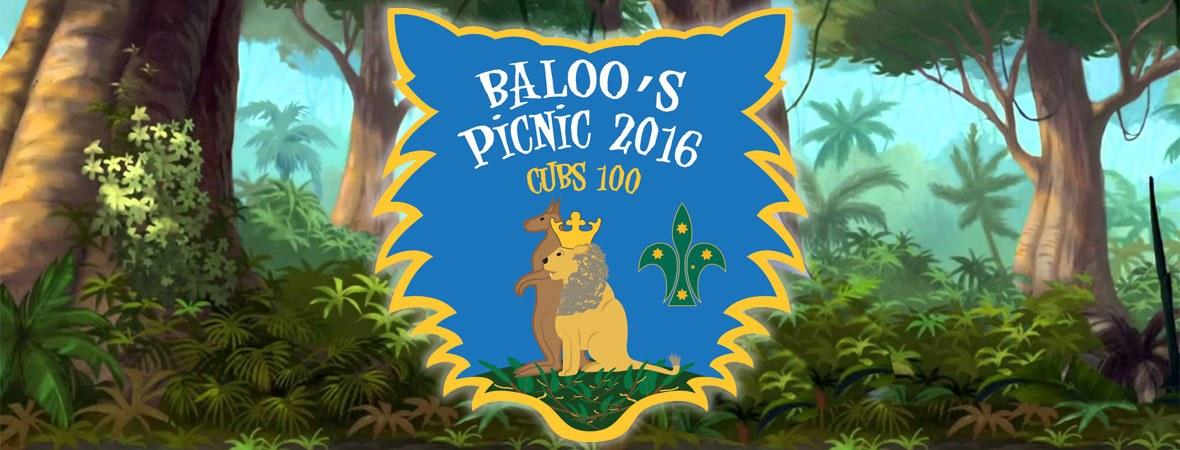 Baloo's Picnic Scouts 2016