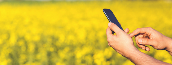 100+ Facts on Mobile Marketing